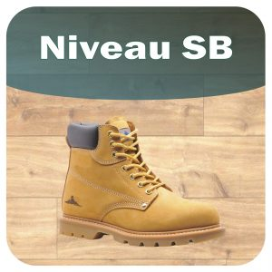Chaussures SB